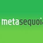 Metasequoia4が3Dプリンターに対応